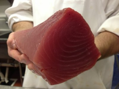 Beautiful Gulf tuna