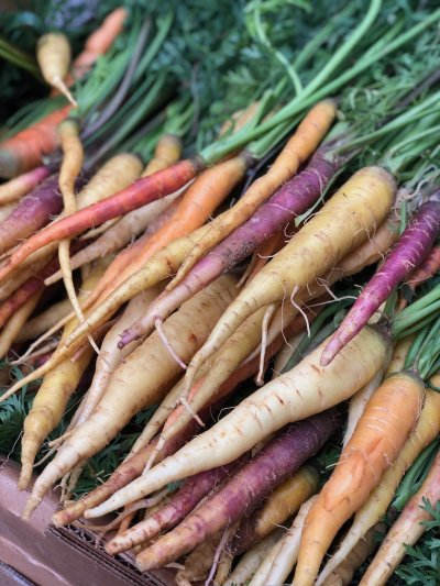 Locally grown carrots from Covey Rise Farms